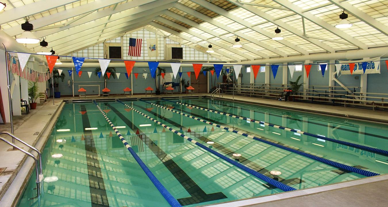 Crest Dolphins Swim Team